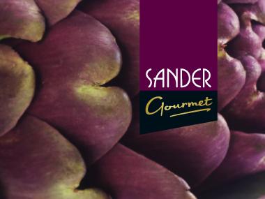 Sander-Titel-02