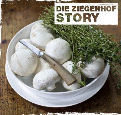 Blog-Ziegenhof